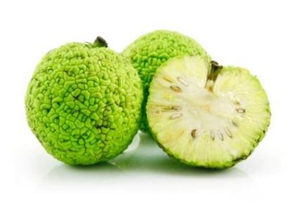 Настойка из адамового яблока для суставов рецепт