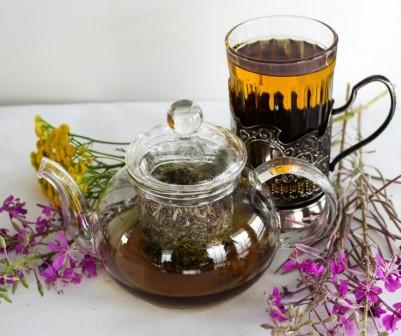 Чабрец, лечебные свойства и противопоказания