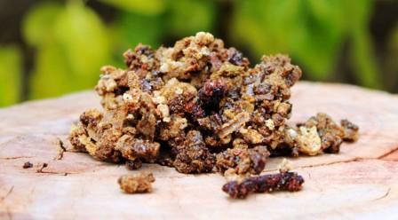 lechenie propolisom zheludochno kishechnogo trakta