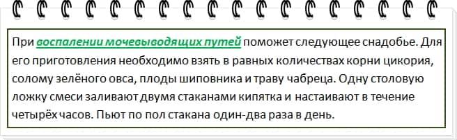 мочевик2-min