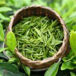 Зачем пить по 2 чашки зеленого чая в день? Польза и вред популярного напитка