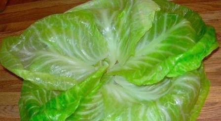 капуста лист