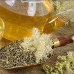 Таволга или лабазник: полезные и лечебные свойства. Противопоказания