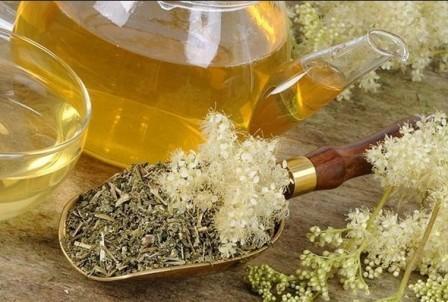 Таволга ли лабазник: полезные, лечебные свойства