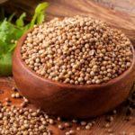 Что это такое – кориандр? Полезные свойства и противопоказания пряности. Кориандровый мед и масло