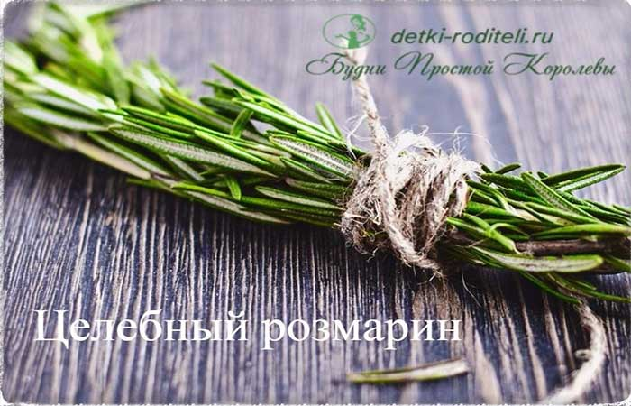 rozmarin-3