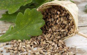 Миниатюра к статье Лечебные свойства дубовой коры, ее применение для лечения. Противопоказание и вред
