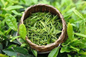 Миниатюра к статье Зачем пить по 2 чашки зеленого чая в день? Польза и вред популярного напитка