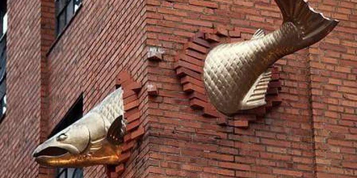 Миниатюра к статье Спящая голова, бегемоты в асфальте и рыба в стене: просто креатифф