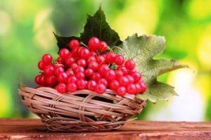 Миниатюра к статье Рецепты лечения ягодой калиной, ее полезные и лечебные свойства