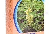 Миниатюра к статье Сироп корней солодки: инструкция по применению детям и лечебные свойства растения