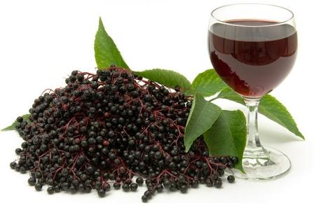 vino iz buziny