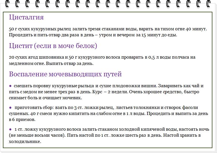 мочепол-система