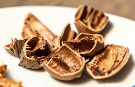 Скорлупа грецкого ореха применение