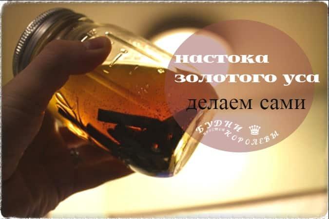 Изображение - Золотой ус настойка на спирту для суставов %D0%BD%D0%B0%D1%81%D1%82%D0%BE%D0%B9%D0%BA%D0%B0-%D0%B7%D0%BE%D0%BB%D0%BE%D1%82%D0%BE%D0%B3%D0%BE-%D1%83%D1%81%D0%B0-2