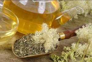 Миниатюра к статье Таволга или лабазник: полезные и лечебные свойства. Противопоказания