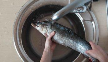 """Миниатюра к статье Как убрать запах рыбы: 10 проверенных способов. Больше ничего не """"пахнет"""" рыбой!"""